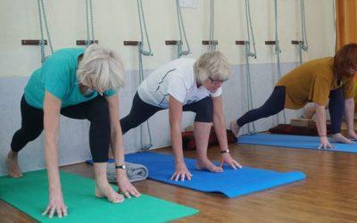Diensten fysiotherapie